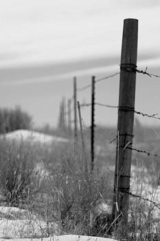 Montana Fenceline by William Kelvie