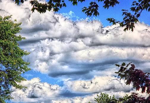 Moody Sky by Michael Degenhardt