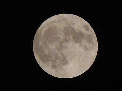Moon by Furin Erika
