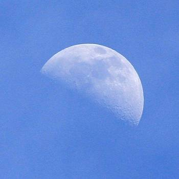 Moon in the daytime  by Unknown