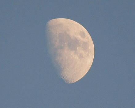 Moon by Kristal Kobold