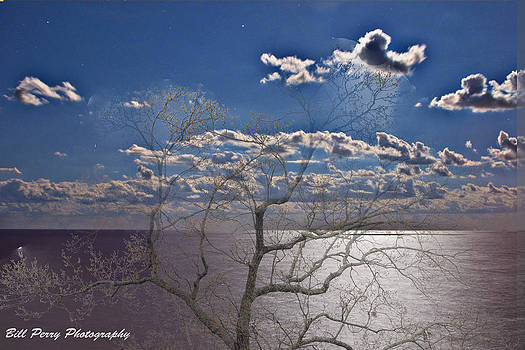 Moon over the water by Bill Perry