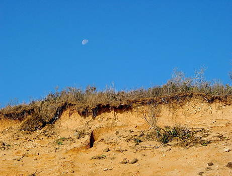 Moon Rise by Valentine Estabrook
