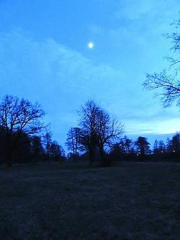 Wojtek Kowalski - Moon