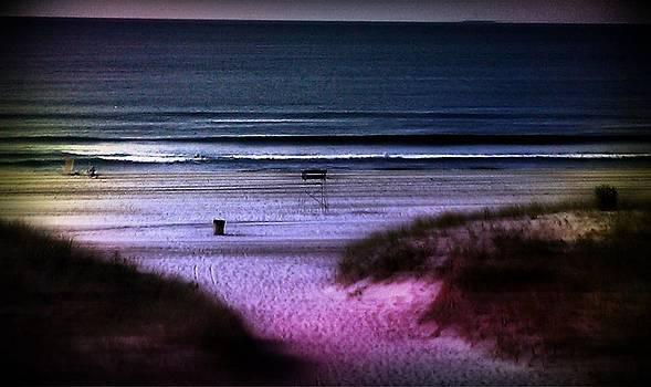 Moonlight Beach by Rita Tortorelli