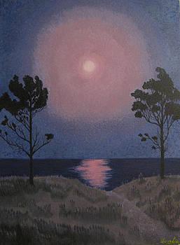 Moonlight by Dalia Gatautiene