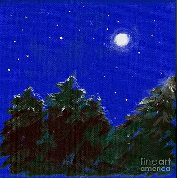 Moonlight by Deb Stroh Larson