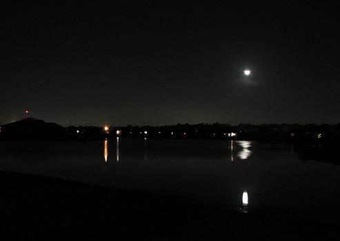 Moonlight Tears by Bill Lucas