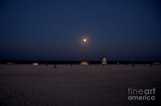 Pravine Chester - Moonlit South Beach