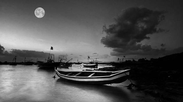 Moonlit by Sydney Alvares