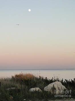 Moonrise at Gooseberry Island by Corrie McDermott