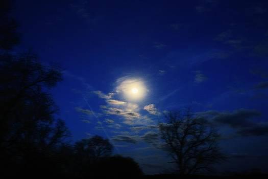Moonrise over Canton by Lorri Crossno