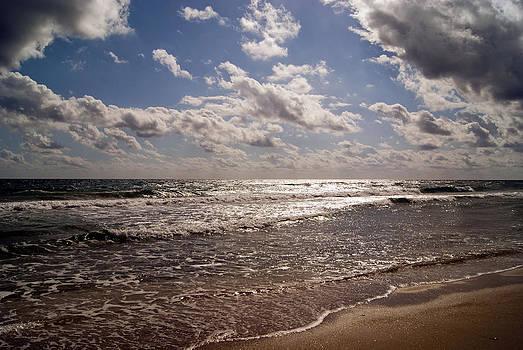 More Beach by Joanna Fox