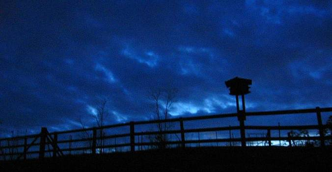 Morning Blues by Deb Martin-Webster