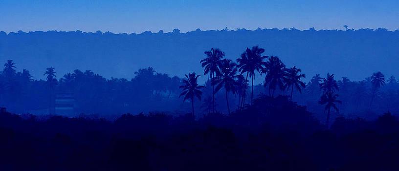 Morning Blues by Sydney Alvares