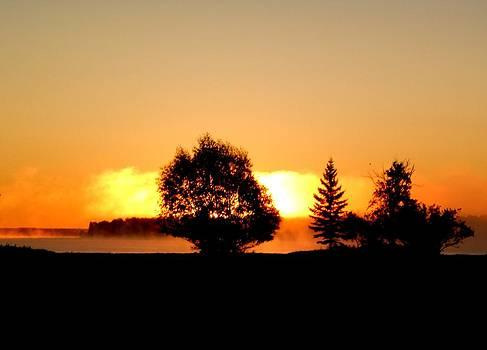 Morning Fog by Jonathan Lagace