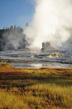 Morning in Yellowstone's Upper Geyser Basin by Bruce Gourley