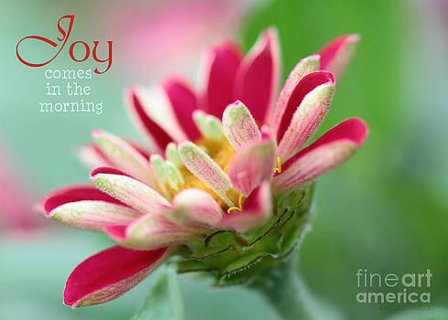Morning Joy by Debra Straub