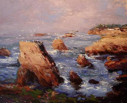 Morning light in Shell Beach by R W Goetting