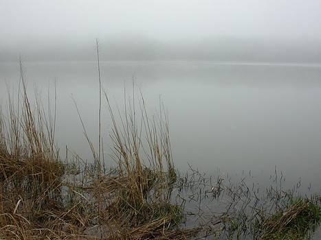 Morning Marsh Fog by Jim Ziemer