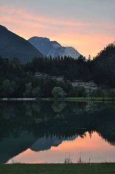 Morning nature by Vincent Geers