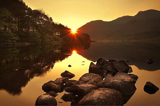 Svetlana Sewell - Morning Rays