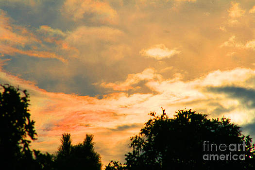 Morning Rise by Louis Sarkas