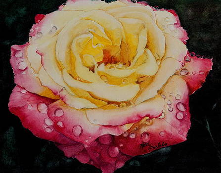 Morning Rose by Kathy Michels