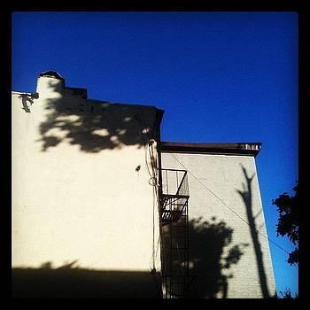 Morning Shadows On Yellow Wall by Fern Fiddlehead