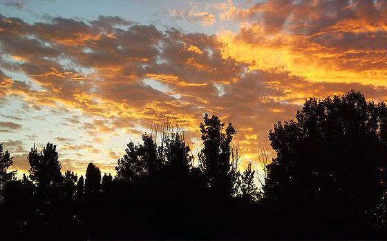 Morning Sky by Robin Hewitt