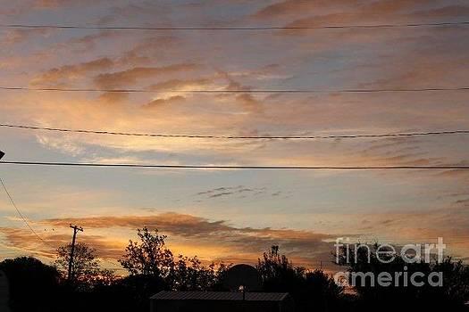 Morning Splendor by Denise Workheiser