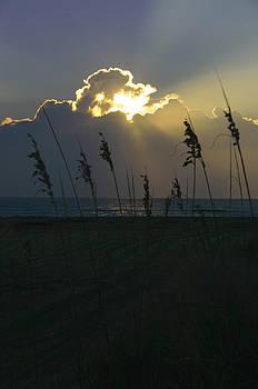 Morning Sun by Jim Ziemer