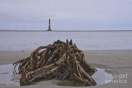 Tim Mulina - Morris Island Lighthouse and Stump - Horizontal