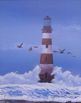 Morris Island Lighthouse by Michael Allen
