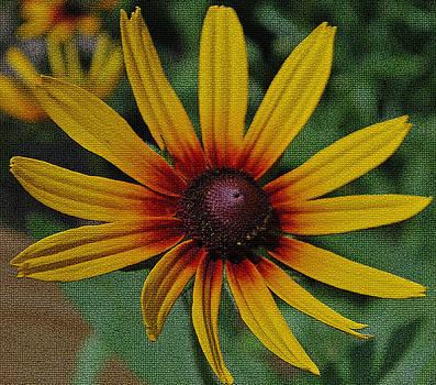 Michelle Cruz - Mosaic Fire Flower