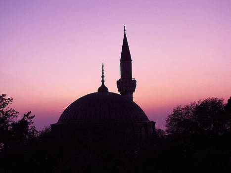 Mosque at Sunrise by Diane Geddes