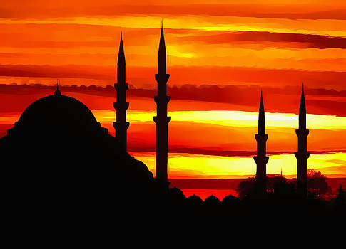 Mosque at Sunset by Diane Geddes