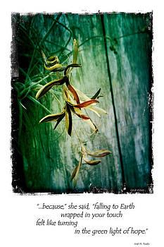 Moss Blossom Wrap by Cynthia Vickers - Jose M Tirado