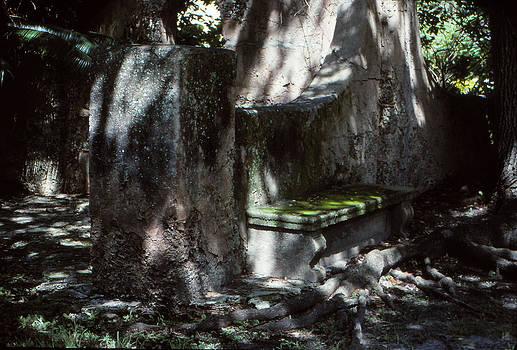 Moss On A Bench by Bob Whitt