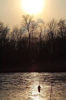Moss pond at sunset by Ralph Hecht