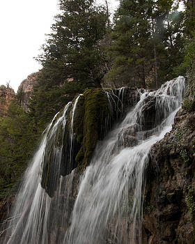 Jason Turuc - Mossy Falls