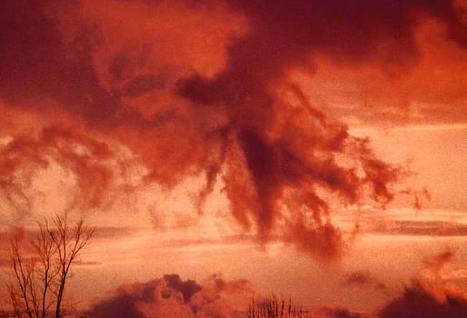 Mother Natures Power by Gloria Warren
