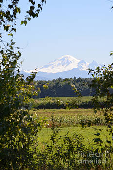 James E Weaver - Mount Baker 2