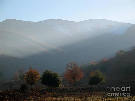 Mount Hermon in fall by Issam Hajjar
