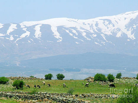 Mount Hermon by Issam Hajjar