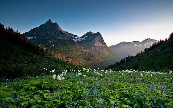 Mount Oberlin by Craig Brown