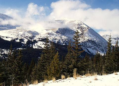Mount Quandry on Hoosier Pass by Donna Parlow