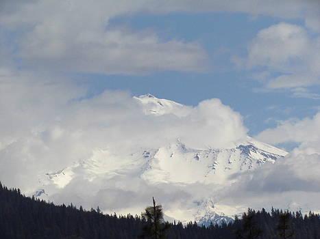Mount Shasta 2 by Tony and Kristi Middleton
