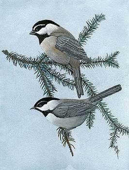 Mountain Chickadees by Marsha Friedman