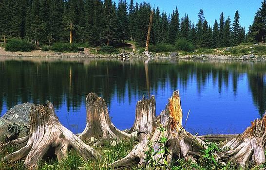 Mountain Lake by Jaye Crist